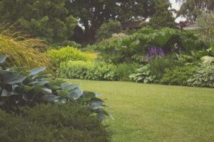 garden1618323911